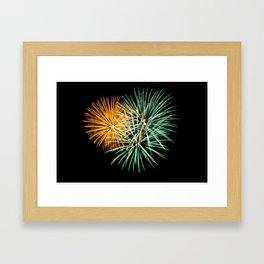 Firework Creations - Tulipfest 22 Framed Art Print
