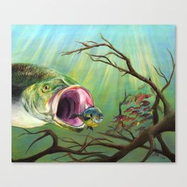 Large Mouth Bass and Clueless Blue Gill Fish Canvas Print