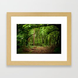 Glade of my Dreams  Framed Art Print