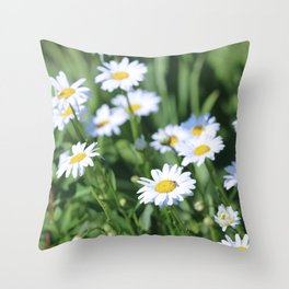 Daisies Daisies Throw Pillow