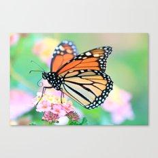 October Monarch Canvas Print