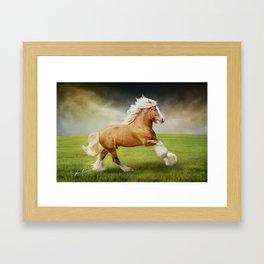 Gypsy Stallion 1 Framed Art Print