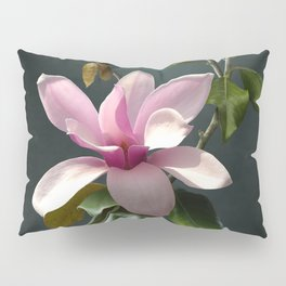 Spade's Pink Magnolias Pillow Sham
