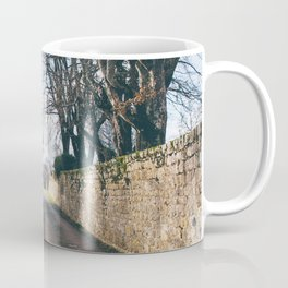 Streets of Domme, France Coffee Mug