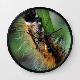 Fuzzy Caterpillar Wall Clock