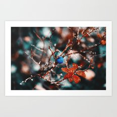 Blueberry Fall Art Print