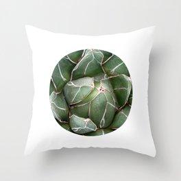 Cactus Succulent Plant art Modern art Scandinavian circle Throw Pillow