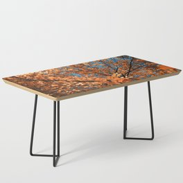 diving into autumn Coffee Table