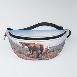 Horses. Goat. Animals. Desert. Utah. 35mm Film. Fanny Pack