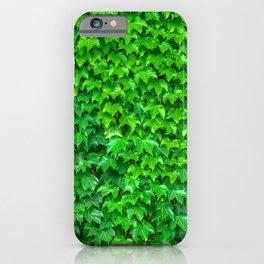 Deep Green Ivy Wall. iPhone Case