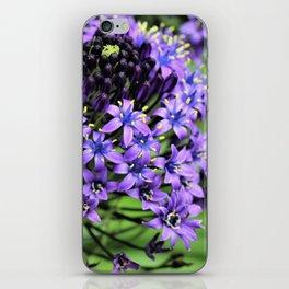 Purple Petals iPhone Skin