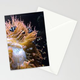 Clownfish 2.0 Stationery Cards
