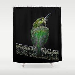 Tody Bird digital art Shower Curtain