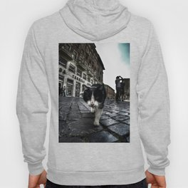 Street Cat Hoody