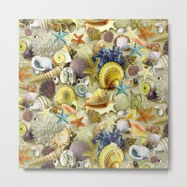 Seashells And Starfish Metal Print