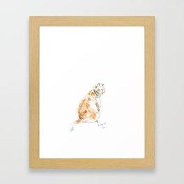 Cat looking back Framed Art Print