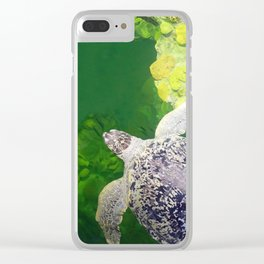 Sea Turtle on Lime Green Clear iPhone Case
