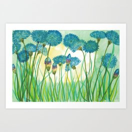 May your cornflowers never fade Art Print