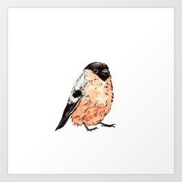 Orange and Black Bird Art Print