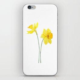 two botanical yellow daffodils watercolor iPhone Skin
