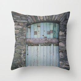 Old Blue Door II Throw Pillow