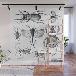 Vintage Beetle black and white drawing Wall Mural