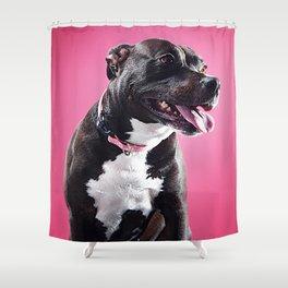 Super Pets Series 1 - Super Lucy Shower Curtain