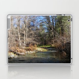 Spring time in Hayfork... Laptop & iPad Skin