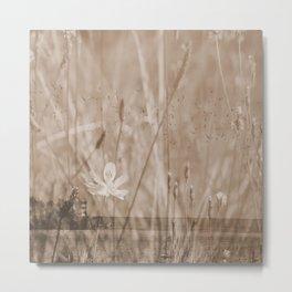 Landscape behind the dike Metal Print