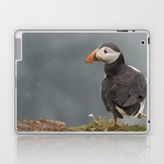 Puffin Laptop & iPad Skin