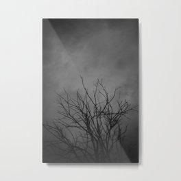 Death Walks Near Metal Print
