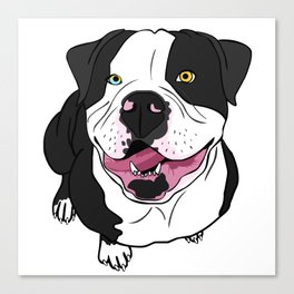 Bubba, the American Bulldog Canvas Print