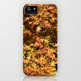 Japanese Maple Fall Leaves iPhone Case