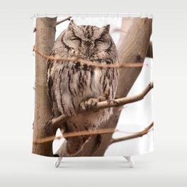Wild Owl - Ivins, Utah Shower Curtain