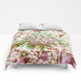 Flower Star Blooming Bud Indoor Hydro Grow Room Top Shelf Comforters