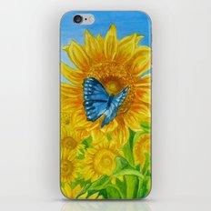 Blue Butterflies iPhone & iPod Skin