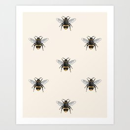 Bumble Bee Illustrated Insect Pattern Art Print