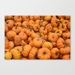 Lil Pumpkin Canvas Print