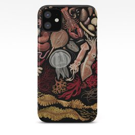 Intertidal Life of the North Atlantic (without species list) iPhone Case
