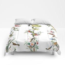 Birds - Art - Vintage - Pattern - Illustration - Nature Comforters