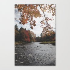 Falling Upstream Canvas Print