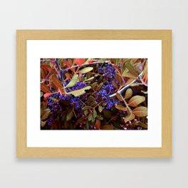 Alien landscape autumn berry surreal plants Framed Art Print