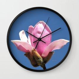 Magnolia Blossom on a Sky Blue Field Wall Clock