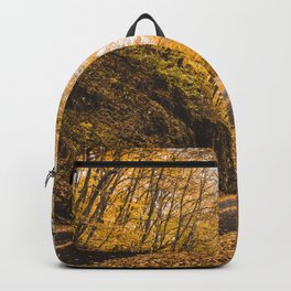 FOLIAGE in the Smoky Mountains of North Carolina Backpack