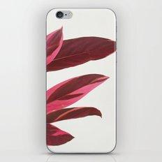 Red Leaves I iPhone & iPod Skin
