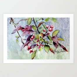 Branch With Blossoms Watercolor Art Print