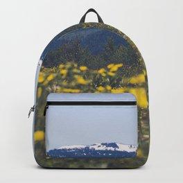 Spring Valley Backpack