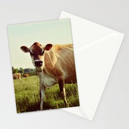 jersey cow Stationery Cards