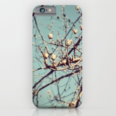 Mountain Nature iPhone 6s Slim Case