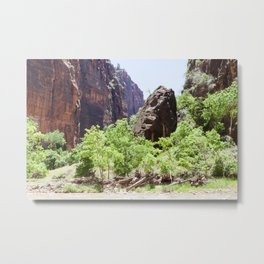 Grounded (Zion National Park, Utah) Metal Print